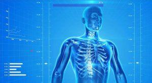 Cursos ergonomia prevencion trastornos musculoesqueleticos