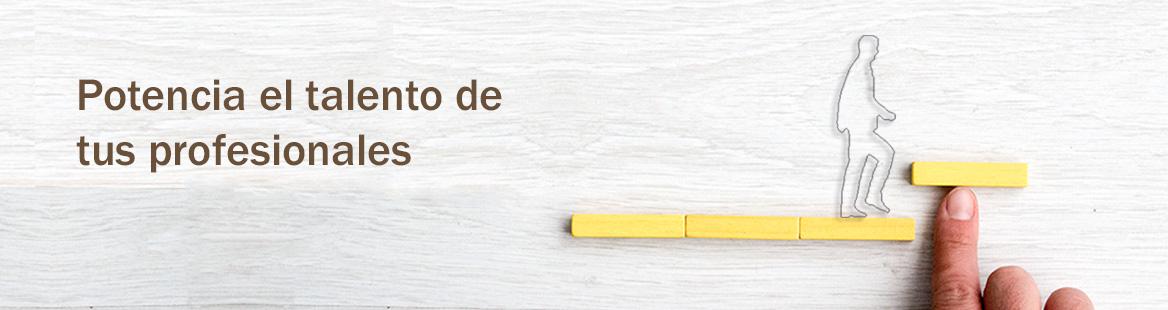 Consultora formacion empresas Galicia Vigo