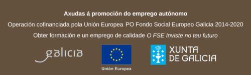 Subvenciones para formacion empresas Galicia